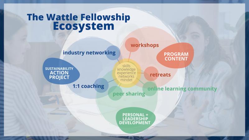 Wattle Fellowship Learning Ecosystem