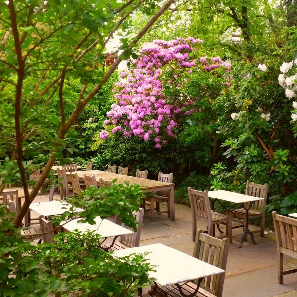 Garden at University House