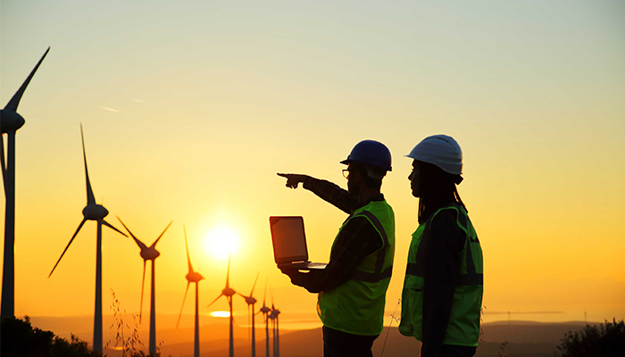 Two workers pointing at wind turbines